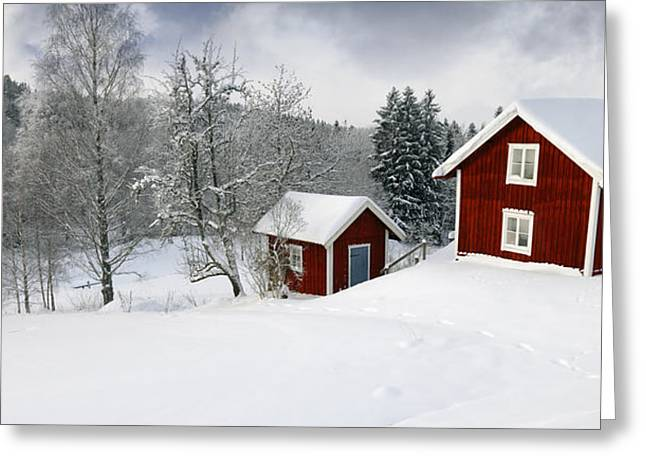 Snow Scape Greeting Cards - Christian Lagereek Greeting Card by Christian Lagereek