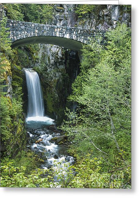 Pierce County Greeting Cards - Christine Falls at Mt. Ranier Greeting Card by Sandra Bronstein
