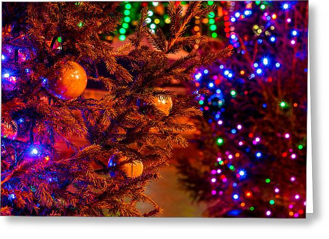 Family Time Greeting Cards - Christmas Greeting Card by Alexander Senin