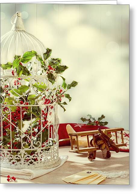 Bird Cage Greeting Cards - Christmas Birdcage Greeting Card by Amanda And Christopher Elwell