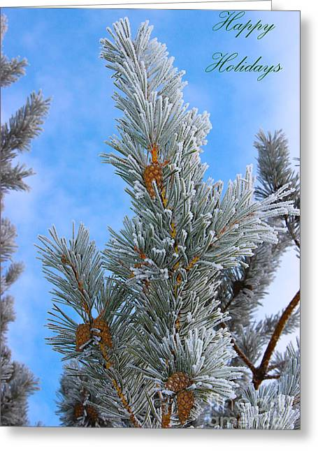 Pine Cones Greeting Cards - Christmas Card 2013 Three Greeting Card by Al Bourassa
