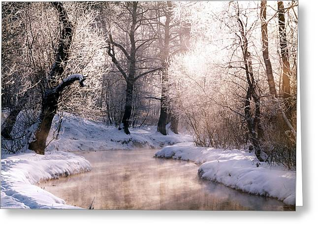 Winter Photos Photographs Greeting Cards - Christmas Card Greeting Card by Anonymous
