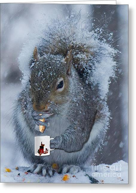Biscotti Greeting Cards - Christmas Card Squirrel w coffee and Biscotti Greeting Card by Sandra Clark
