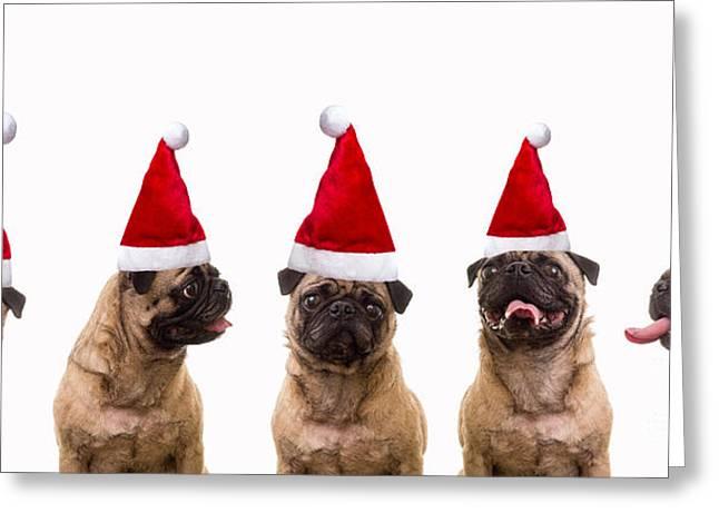 Christmas Caroling Dogs Greeting Card by Edward Fielding