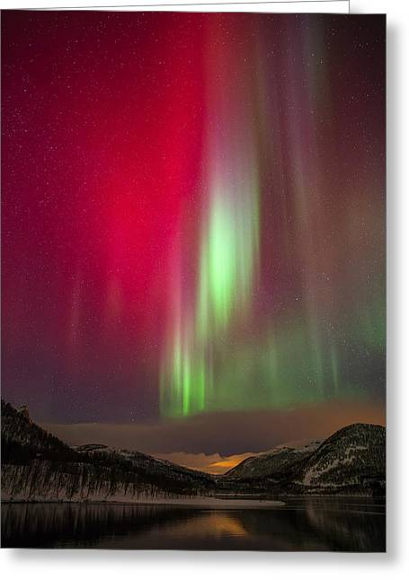 Northernlights Greeting Cards - Christmas colors Greeting Card by Anders Hanssen