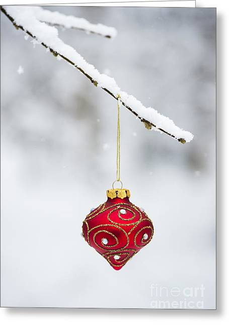 Merry Christmas Photographs Greeting Cards - Christmas Decoration Greeting Card by Tim Gainey