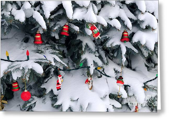 Celebrate Photographs Greeting Cards - Christmas decorations in snow Greeting Card by Elena Elisseeva
