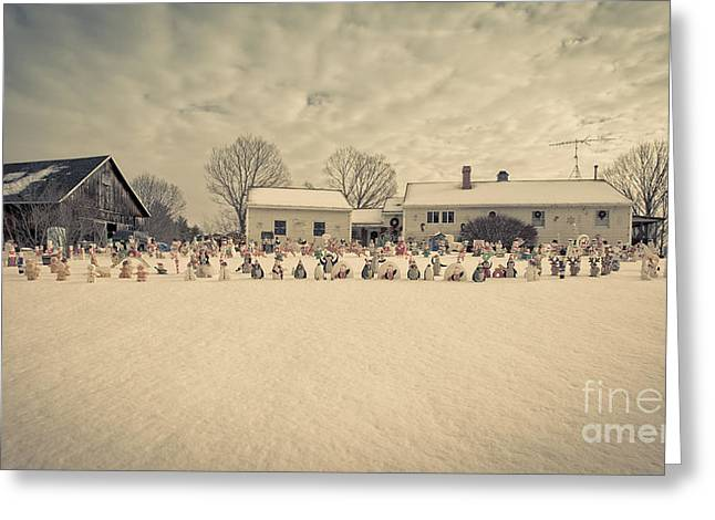 New England Lights Greeting Cards - Christmas Decorations in the snow Greeting Card by Edward Fielding