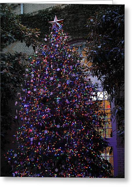 United Greeting Cards - Christmas Display - US Botanic Garden - 011357 Greeting Card by DC Photographer