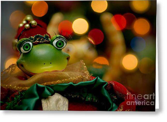 Bokeh Greeting Cards - Christmas Frog Greeting Card by Amy Cicconi