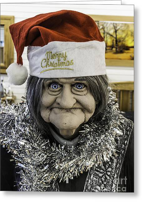 White Photographs Greeting Cards - Christmas Grandma Greeting Card by Steve Purnell