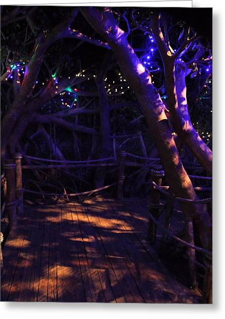 Christmas Eve Photographs Greeting Cards - Christmas In The Jungle Greeting Card by Dan Sproul