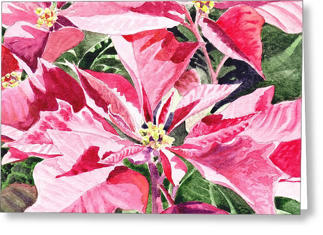 Holiday Greeting Greeting Cards - Christmas Greeting Card by Irina Sztukowski