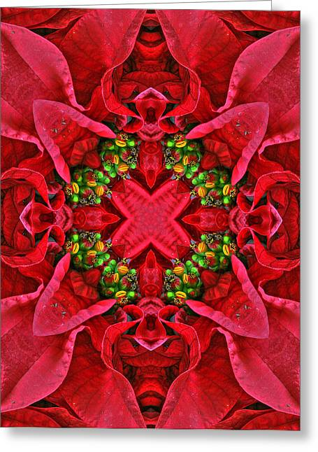 Kwanzaa Greeting Cards - Christmas Kaleidoscope III Greeting Card by Dawn Currie