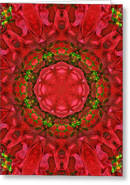 Kwanzaa Greeting Cards - Christmas Kaleidoscope IV Greeting Card by Dawn Currie