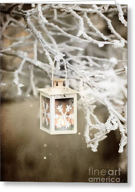 Fir Pyrography Greeting Cards - Christmas lantern Greeting Card by Natasha Breen