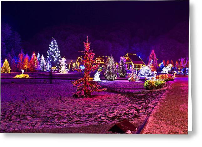 Park Scene Mixed Media Greeting Cards - Christmas lights in town park - fantasy colors Greeting Card by Dalibor Brlek