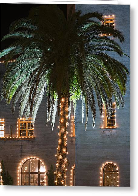 Christmas Palm Greeting Card by Kenneth Albin