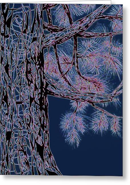 Pine Needles Drawings Greeting Cards - Christmas Pine Greeting Card by Andrea Carroll
