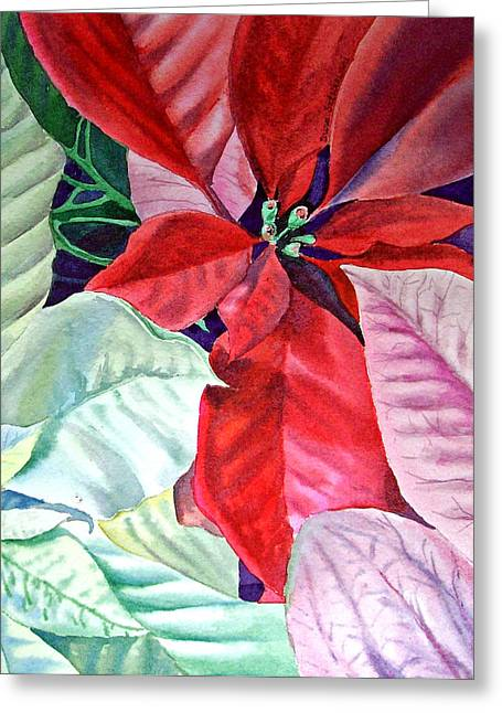 Holiday Greeting Greeting Cards - Christmas Poinsettia Greeting Card by Irina Sztukowski