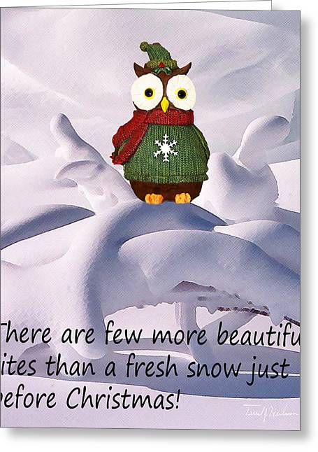 Snow Drifts Digital Art Greeting Cards - Christmas Season Snow Greeting Card by Terril Heilman