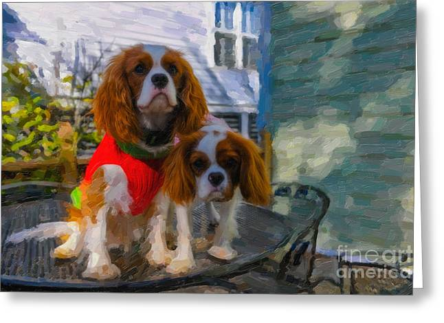 Dog Sweaters Greeting Cards - Christmas Sweater Greeting Card by Dale Powell