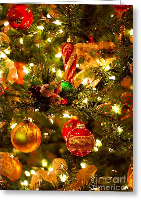 Waiting Photographs Greeting Cards - Christmas tree background Greeting Card by Elena Elisseeva