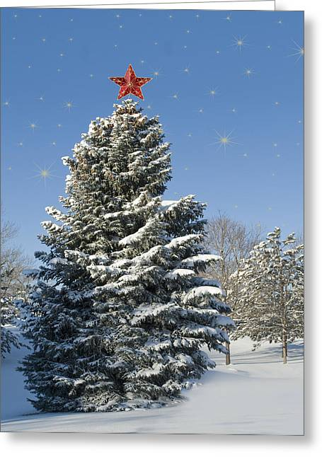 Yuletide Greeting Cards - Christmas Tree Greeting Card by Juli Scalzi