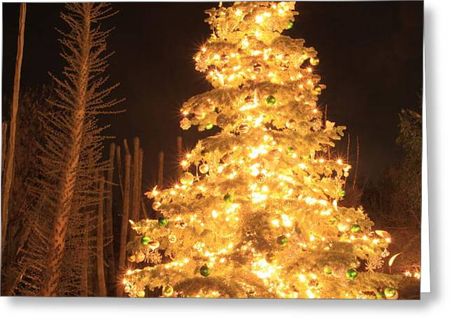 christmas tree lights Greeting Card by Boon Mee
