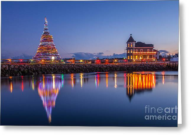 Winter In Maine Greeting Cards - Christmas Tree Reflection Greeting Card by Susan Cole Kelly