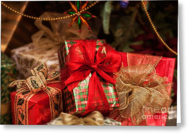 Fineartprint Greeting Cards - Christmasgift under The Tree Greeting Card by Iris Richardson