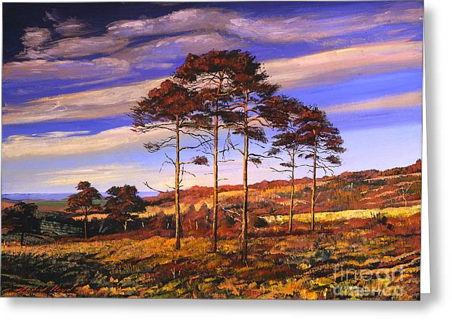 Ocean Landscape Greeting Cards - Christopher Robins Wood Greeting Card by David Lloyd Glover