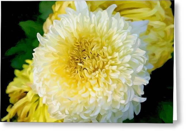 Season Greeting Cards - Chrysanthemum Flower Greeting Card by Lanjee Chee