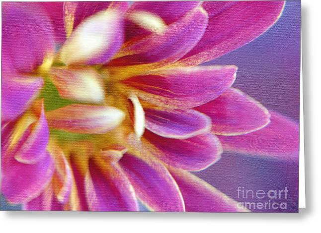Chrysanthemum Painting Greeting Card by Irina Wardas