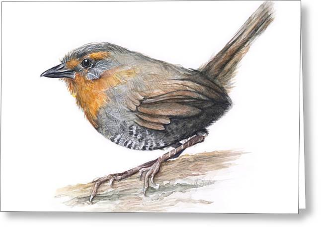 Chile Greeting Cards - Chucao Tapaculo Watercolor Greeting Card by Olga Shvartsur