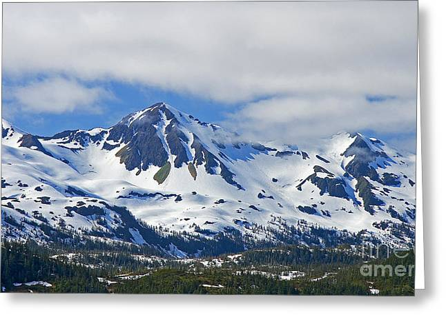 Boren Greeting Cards - Chugach Mountains Greeting Card by Nick  Boren
