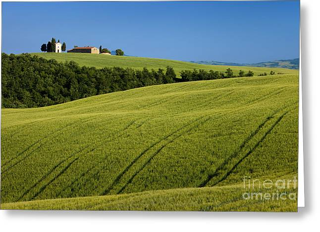 Church In The Field Greeting Card by Brian Jannsen
