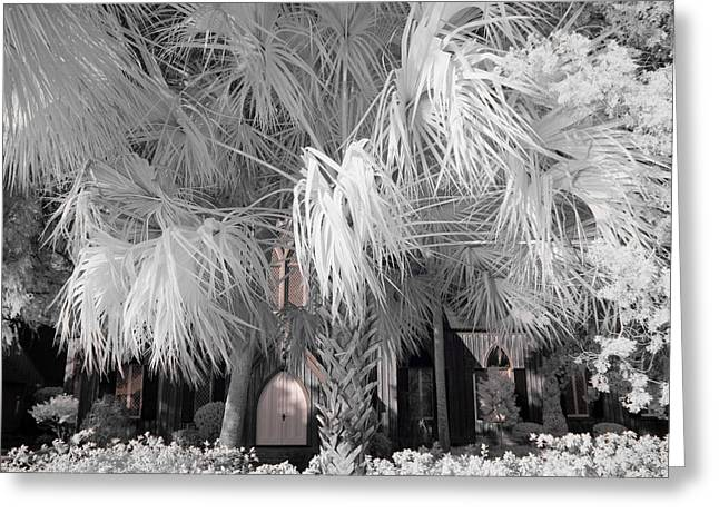 South Carolina Infrared Landscape Greeting Cards - Church of the Cross Greeting Card by Bruce Siulinski