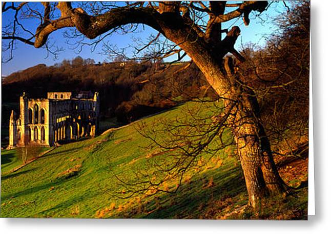 Civilization Greeting Cards - Church On A Landscape, Rievaulx Abbey Greeting Card by Panoramic Images