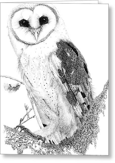 Barn Pen And Ink Greeting Cards - Church owl Greeting Card by Hanneke Messelink-Anders