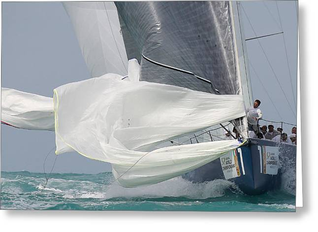 Sailboat Ocean Greeting Cards - Chute 2 Greeting Card by Steven Lapkin