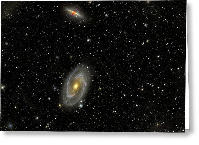 Intergalactic Space Photographs Greeting Cards - Cigar Galaxy And Bodes Galaxy Greeting Card by Reinhold Wittich