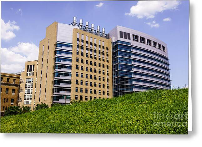 Amiercan Greeting Cards - Cincinnati Childrens Hospital Medical Center Greeting Card by Paul Velgos