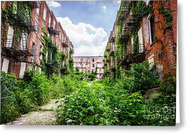 Dilapidated Greeting Cards - Cincinnati Glencoe-Auburn Place Picture Greeting Card by Paul Velgos