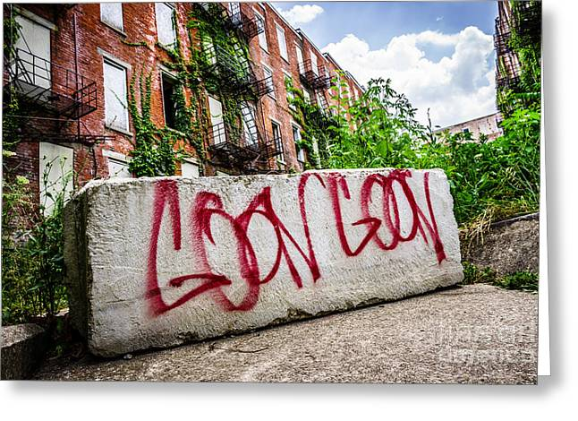 Dilapidated Greeting Cards - Cincinnati Glencoe Hole Graffiti Picture Greeting Card by Paul Velgos