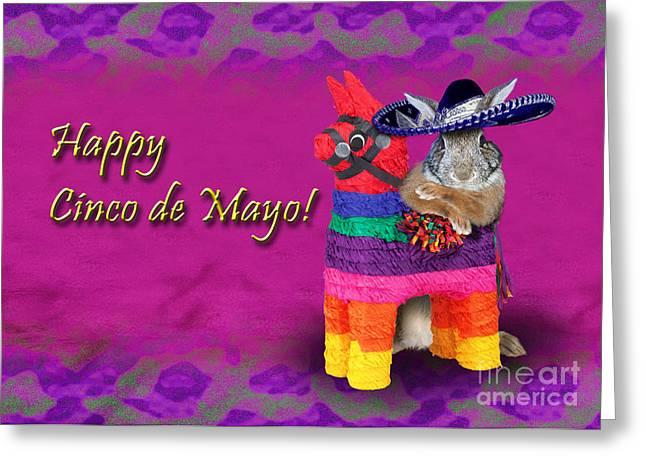 Wildlife Celebration Greeting Cards - Cinco de Mayo Bunny Rabbit Greeting Card by Jeanette K