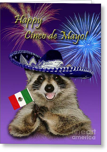 Wildlife Celebration Greeting Cards - Cinco de Mayo Raccoon Greeting Card by Jeanette K