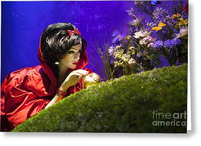 Harrods Greeting Cards - Snow White Greeting Card by Brian Jannsen