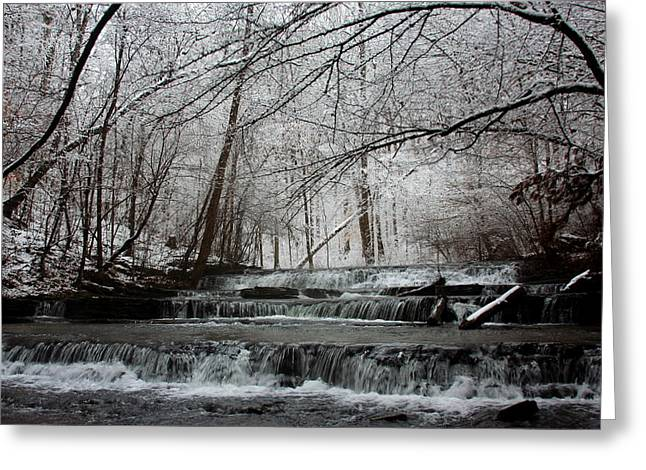 Hallmark Greeting Cards - Cinderella Falls in Winter Greeting Card by Rachel Hallmark