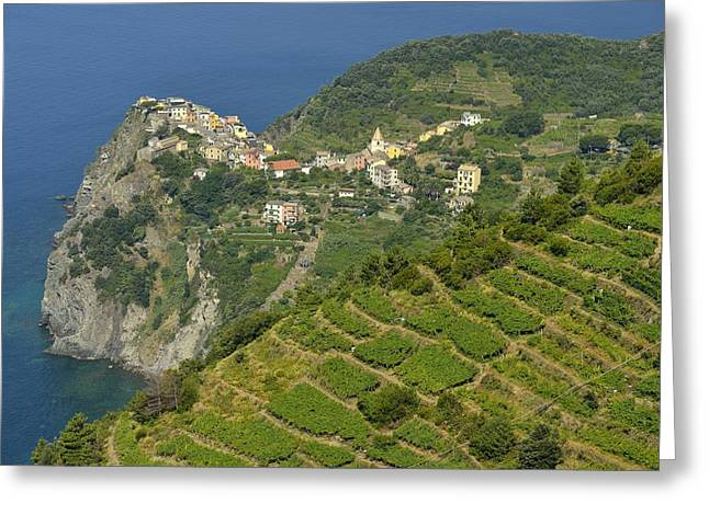 Cape Town Greeting Cards - Cinque Terre Greeting Card by Christian Heeb